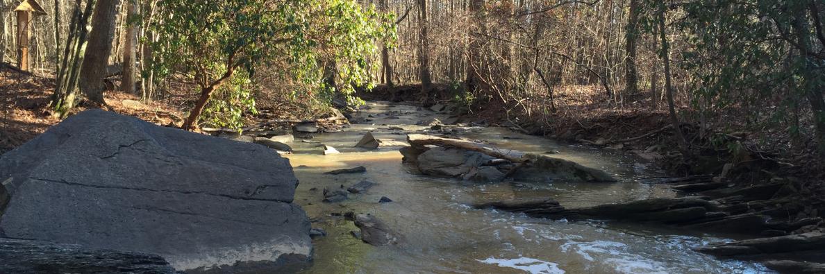 Sals Creek
